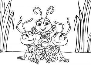 Les petits insectes de 1001 pattes