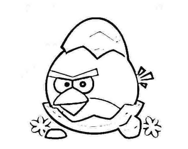 Coloriage sympa de Angry birds à imprimer et colorier