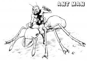Ant man sur une fourmi