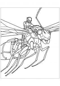 Ant man sur une fourmi à ailes