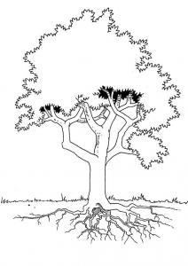 Coloriage_arbre 6