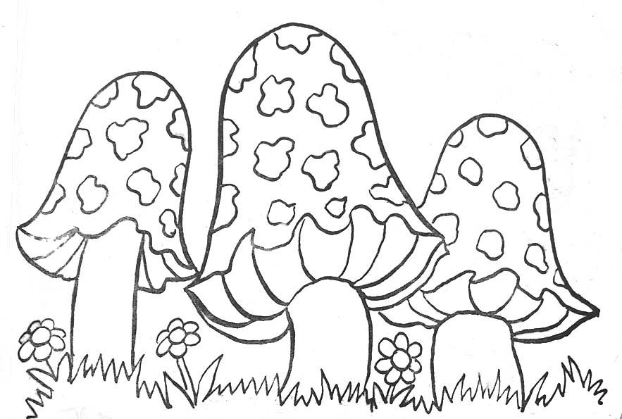 Coloriage champignons 2 coloriage de champignons - Dessiner un champignon ...