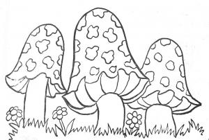 Image de champignon à télécharger et colorier
