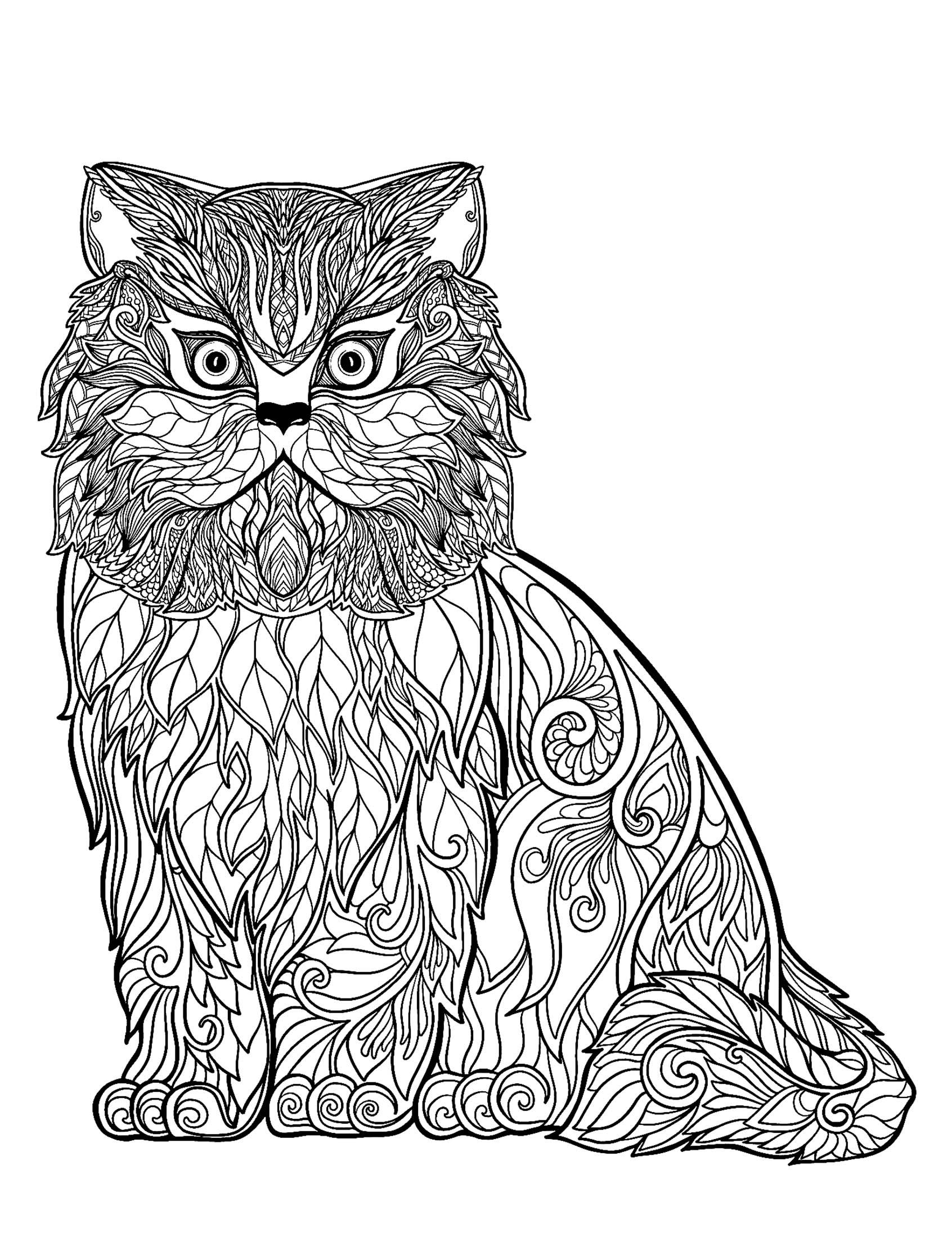 Dessin de chat gratuit à imprimer et colorier - Coloriages ...