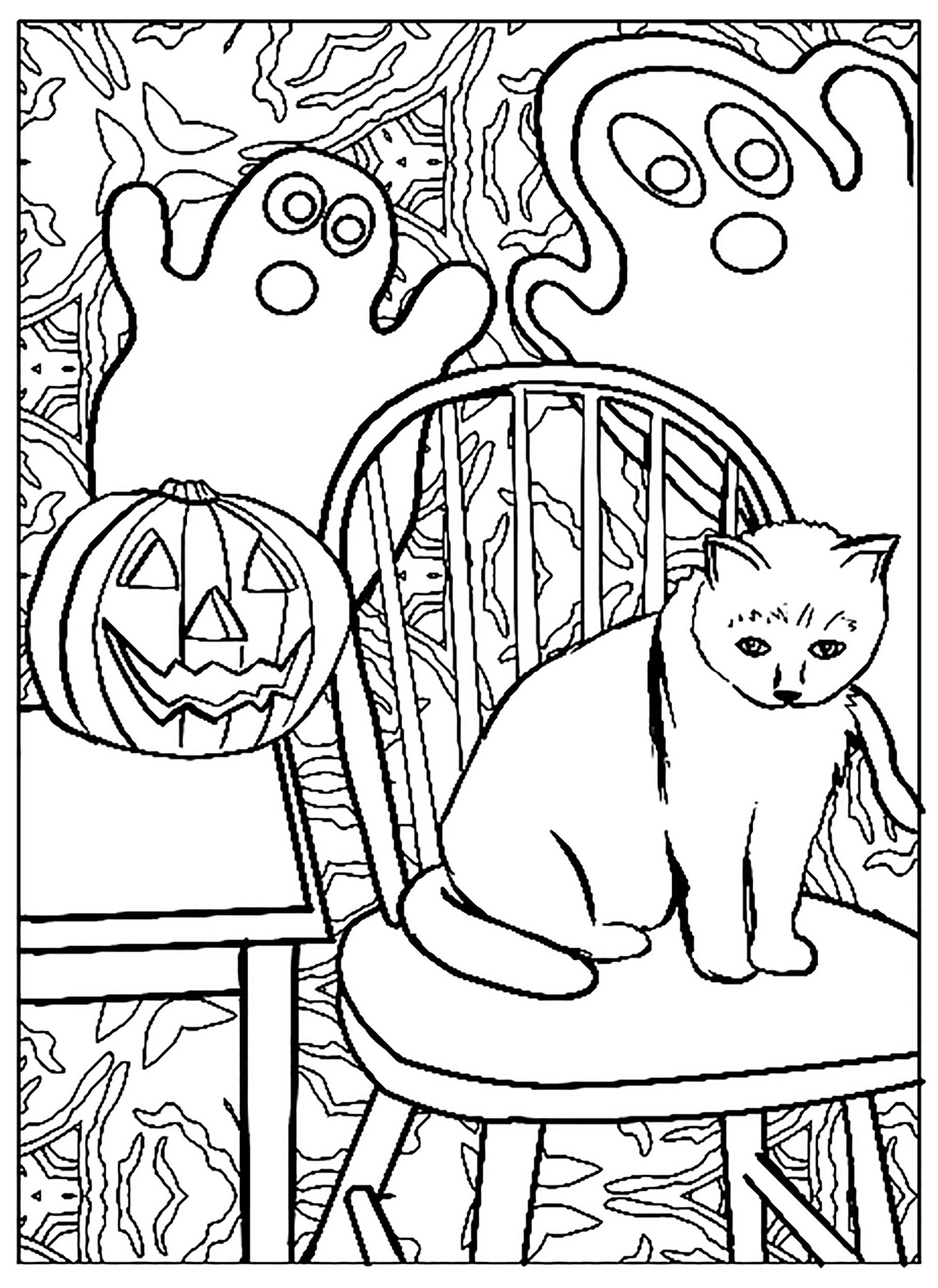 Super coloriage de chat assez simple