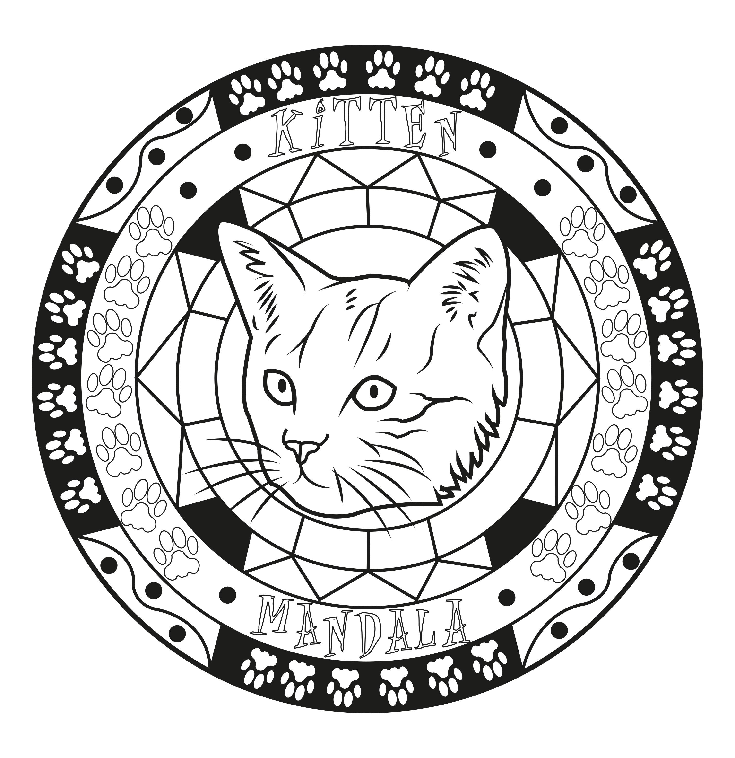 Mandala chat coloriages de chats coloriages pour enfants - Coloriage tete de chat ...
