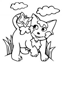 Chat mignon à colorier free to print