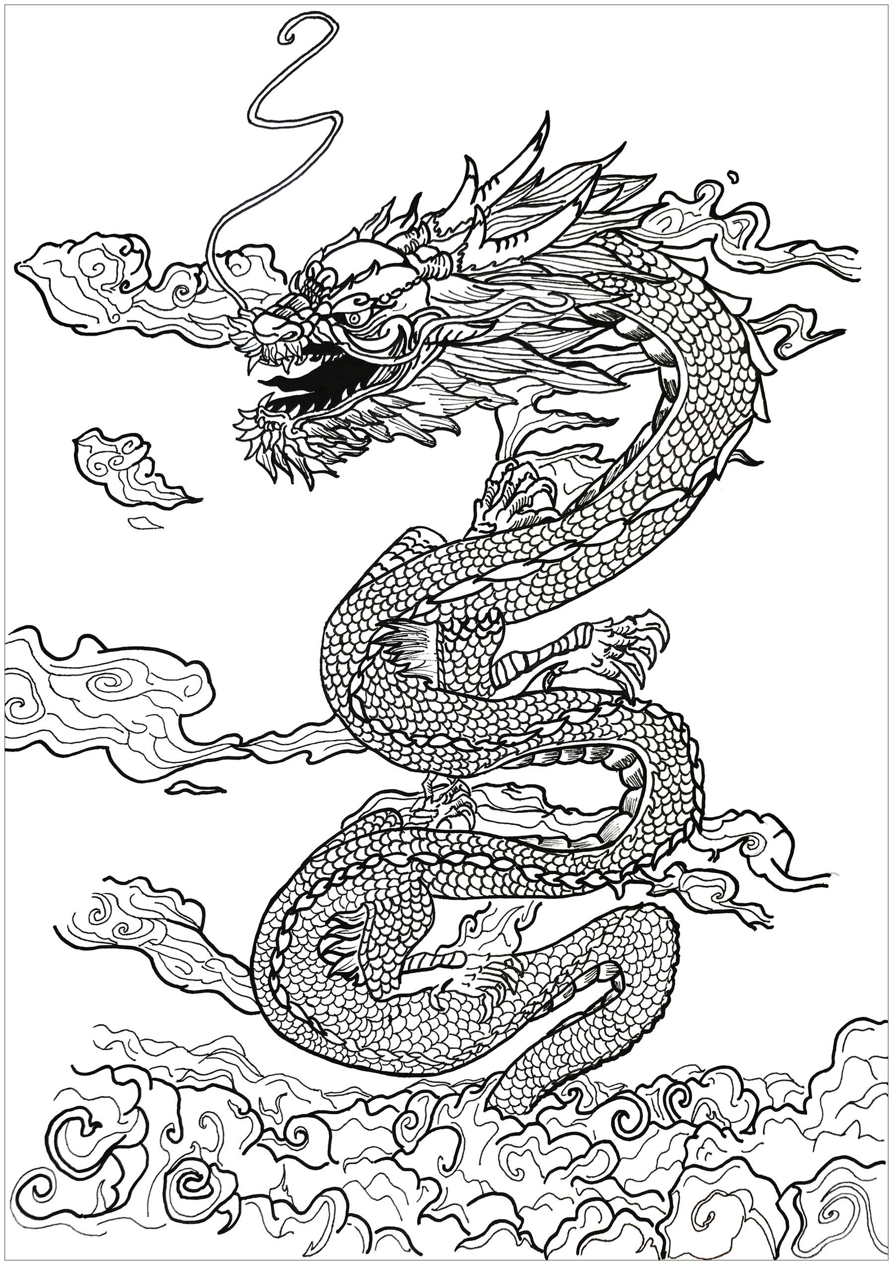 Dragon dans les nuages