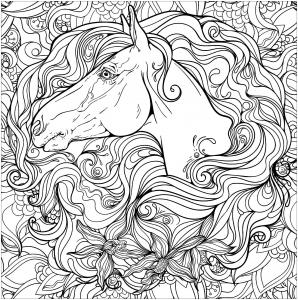 Cheval et son petit coloriages de chevaux et poneys - Dessin de cheval magnifique ...