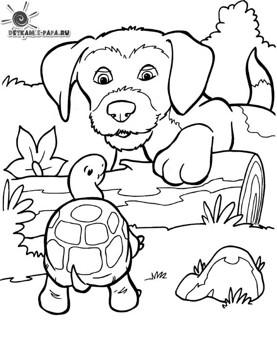 Un Coloriage de chien avec une tortue