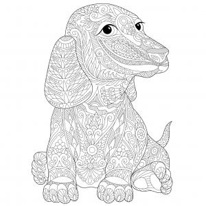 Chien Labrador Coloriages De Chiens Coloriages Pour Enfants