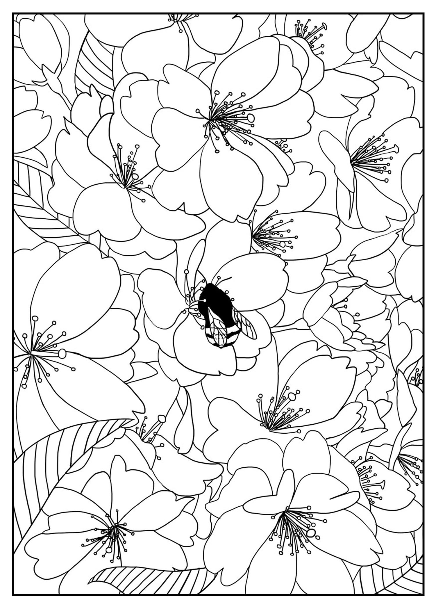 Coloriage Cerisier Japonais.Pour Cerisier Coloriage Adulte Coloriages Pour Enfants