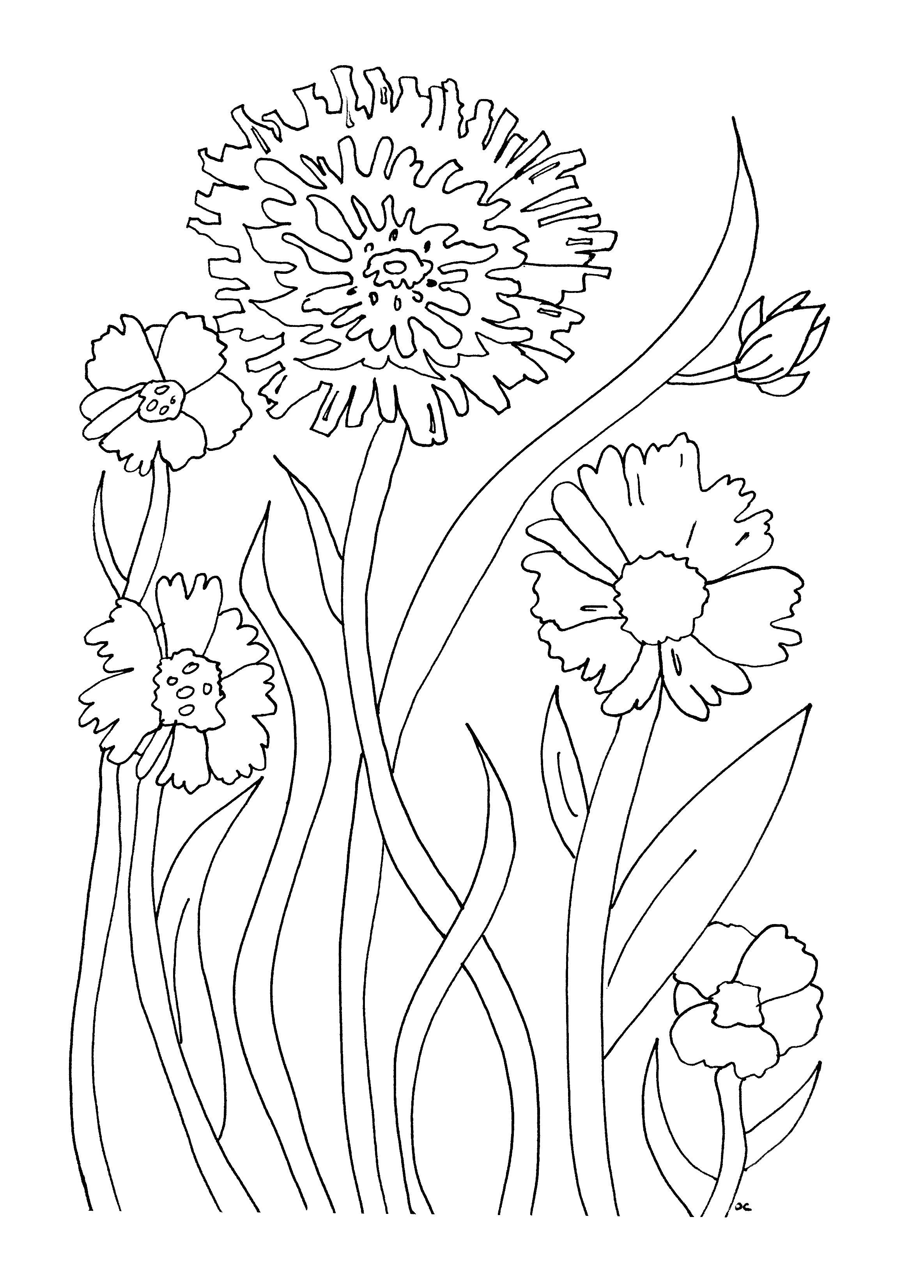 Simples Fleurs Coloriage Adulte Coloriages Pour Enfants