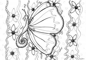 Coloriage papillon par zenfeerie