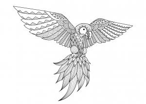 Coloriage pour adulte difficile zentangle perroquet par bimdeedee gratuit a imprimer