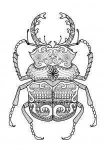 Coloriage pour adulte difficile zentangle scarabee par bimdeedee gratuit a imprimer
