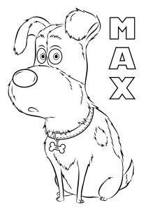 Coloriage de Comme des bêtes à imprimer pour enfants