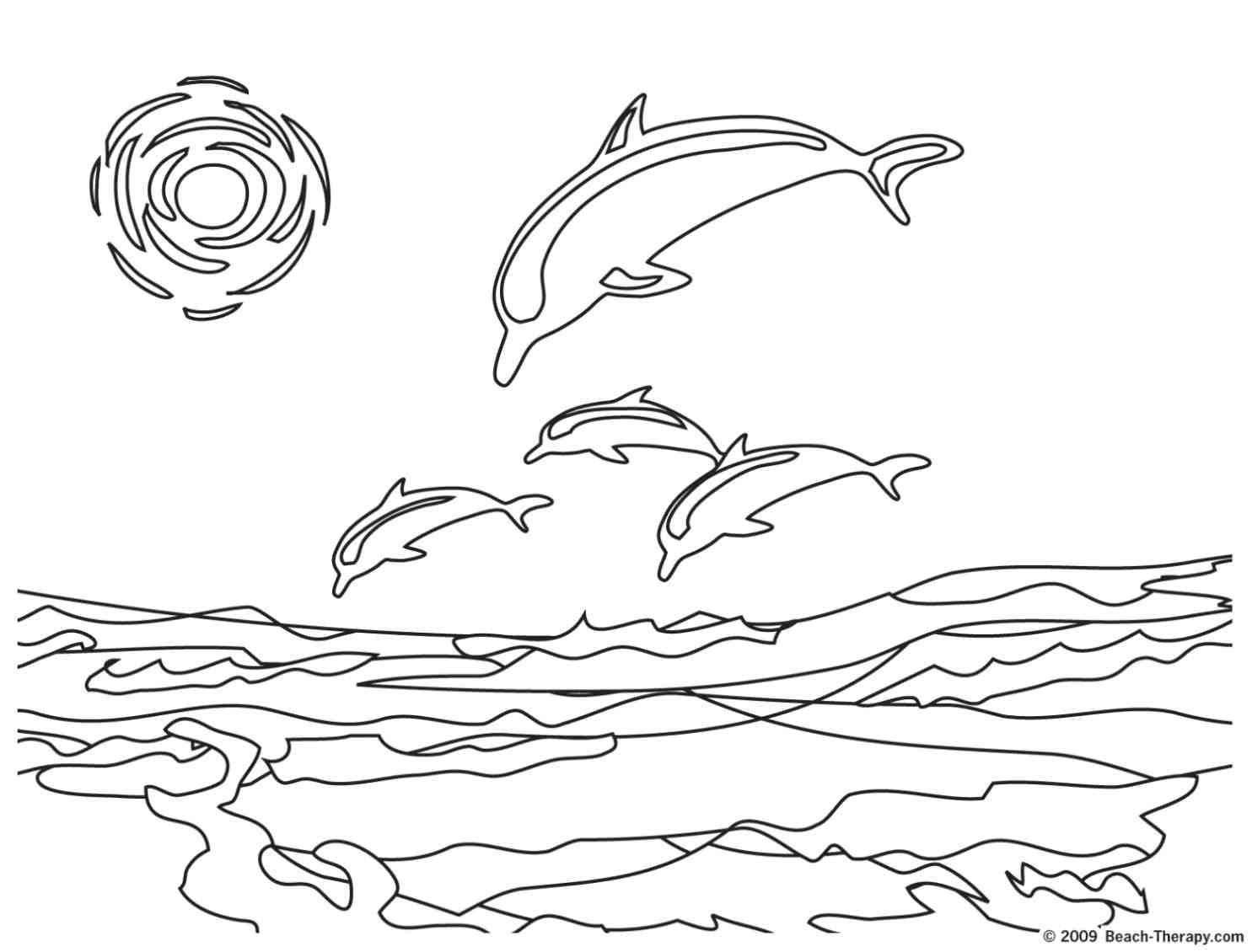 dauphins qui plongent dans la mer coloriage dauphins 7
