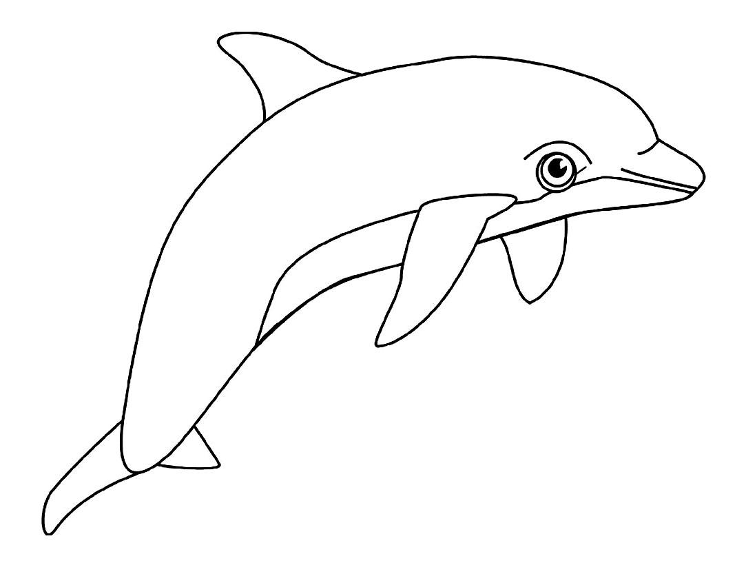 Dauphins 9 coloriage de dauphins coloriages pour enfants - Dauphin a imprimer ...