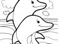 Image de dauphins à télécharger et colorier