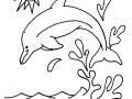Coloriage de dauphin pour enfants