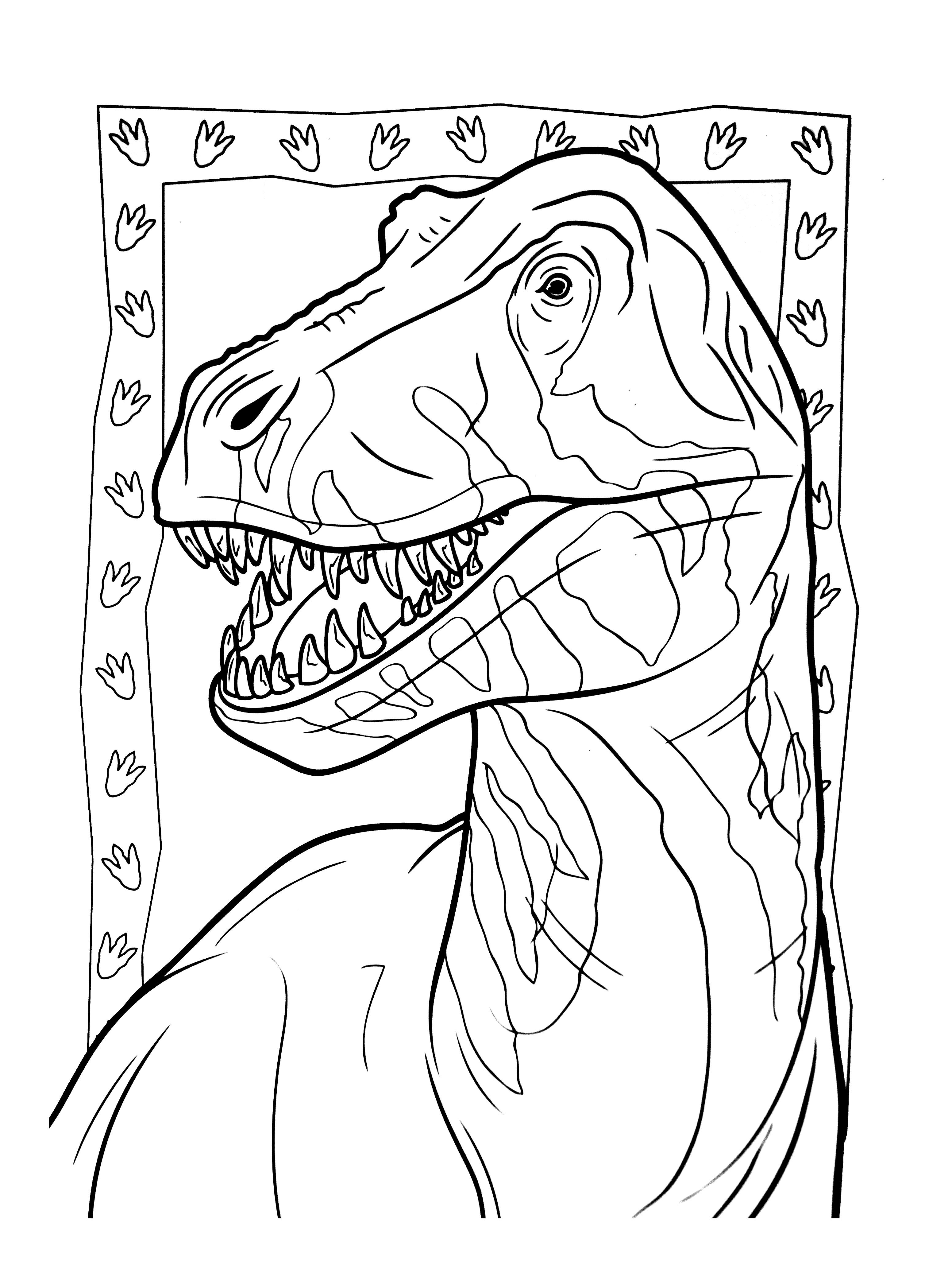 A Imprimer Dinosaure 4 Coloriages De Dinosaures