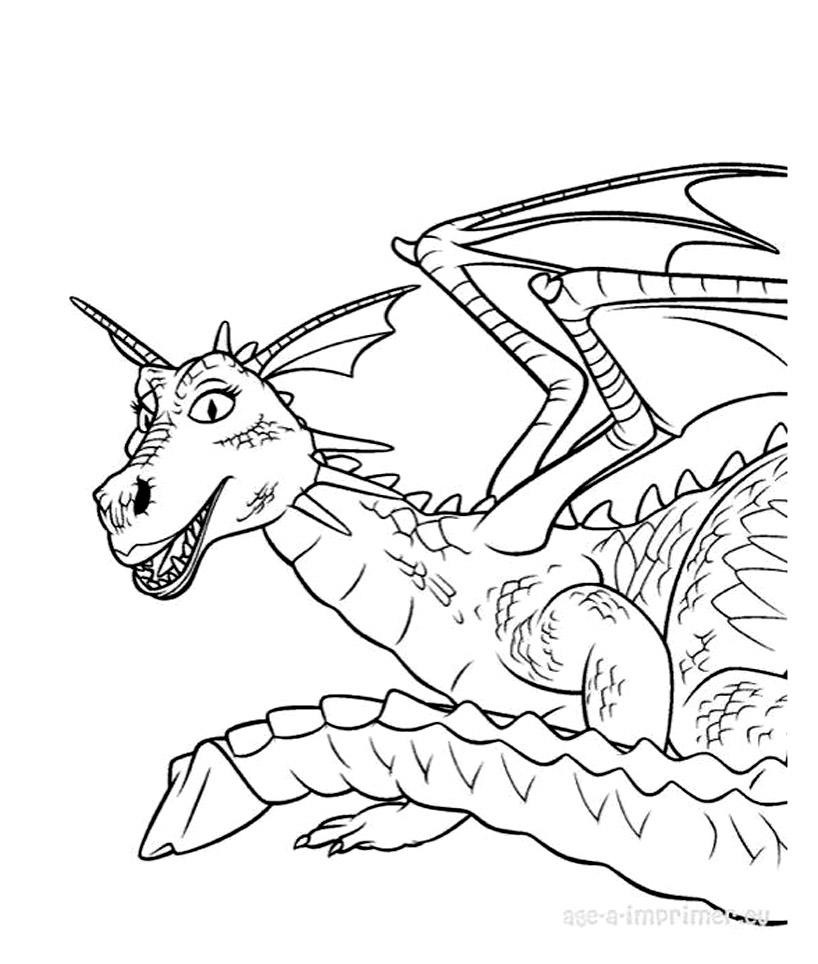 Dragons dreamworks 12 coloriage dragons coloriages - Coloriages de dragons ...