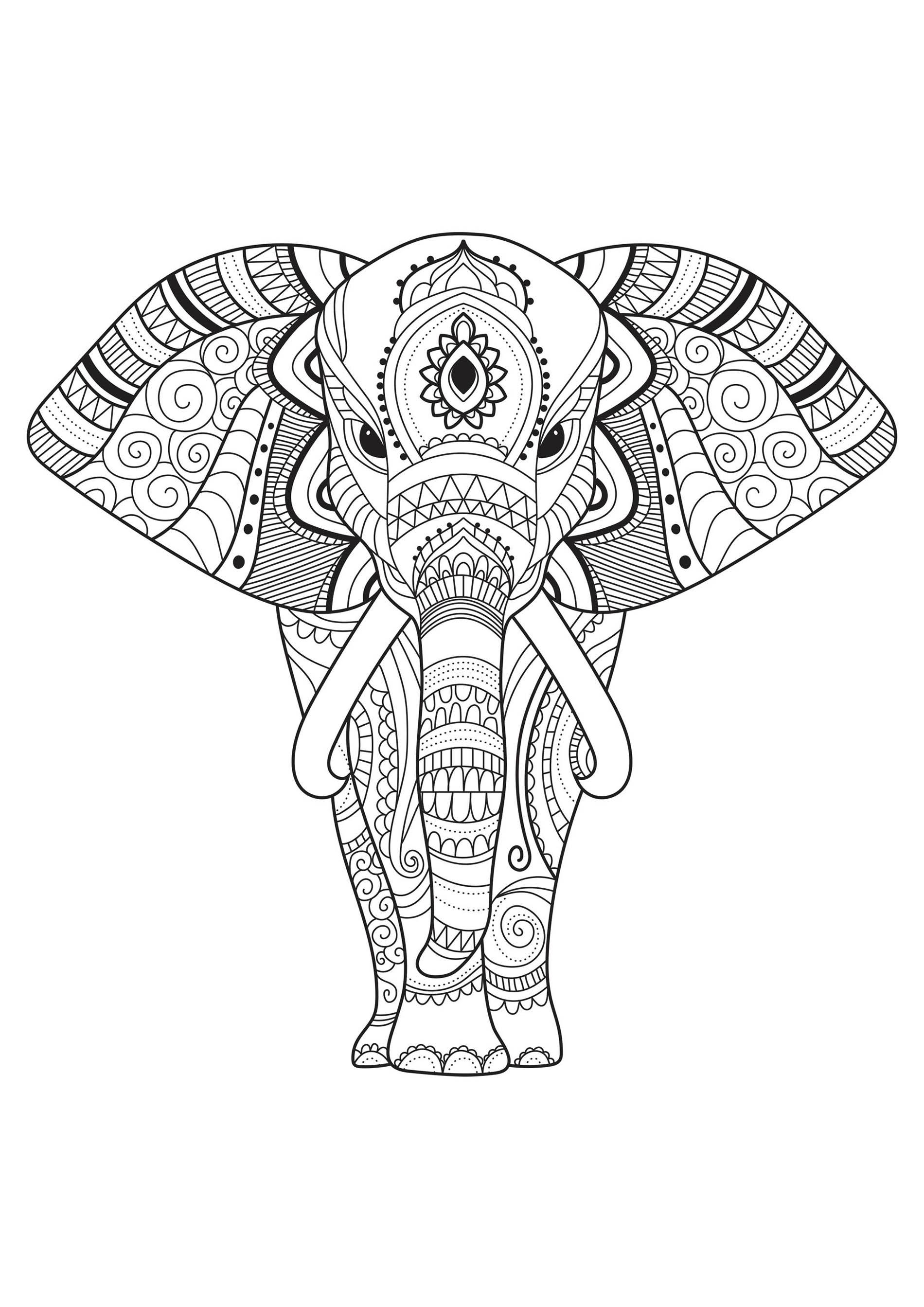 Joli Elephant Decore Coloriage D Elephants Coloriages Pour Enfants