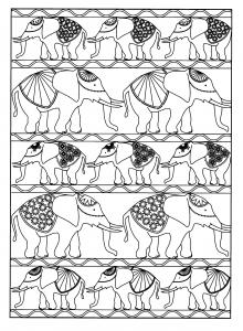 Plusieurs éléphants