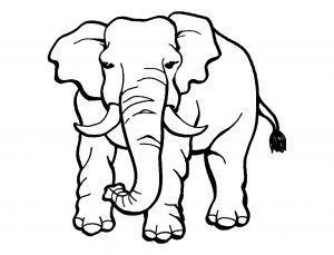 Kostenlose Malvorlagen Tiere Image Elefant Von Vorne 2 Ausmalbild throughout Gratis Malvorlagen Tiere