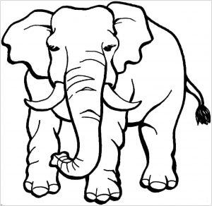 Coloriage d'éléphant à imprimer et colorier