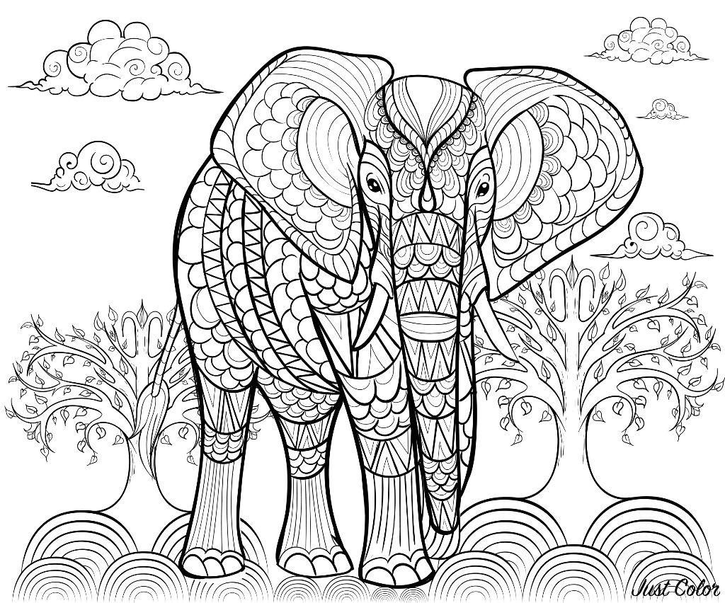 Coloriage De Elephant A Imprimer Gratuitement Coloriage D