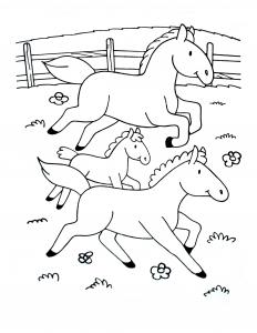 Image de Ferme à télécharger et colorier