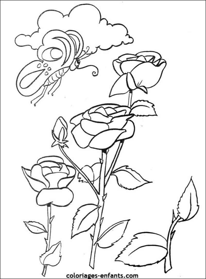 Coloriage de Fleurs à imprimer gratuitement - Coloriage de Fleurs - Coloriages pour enfants