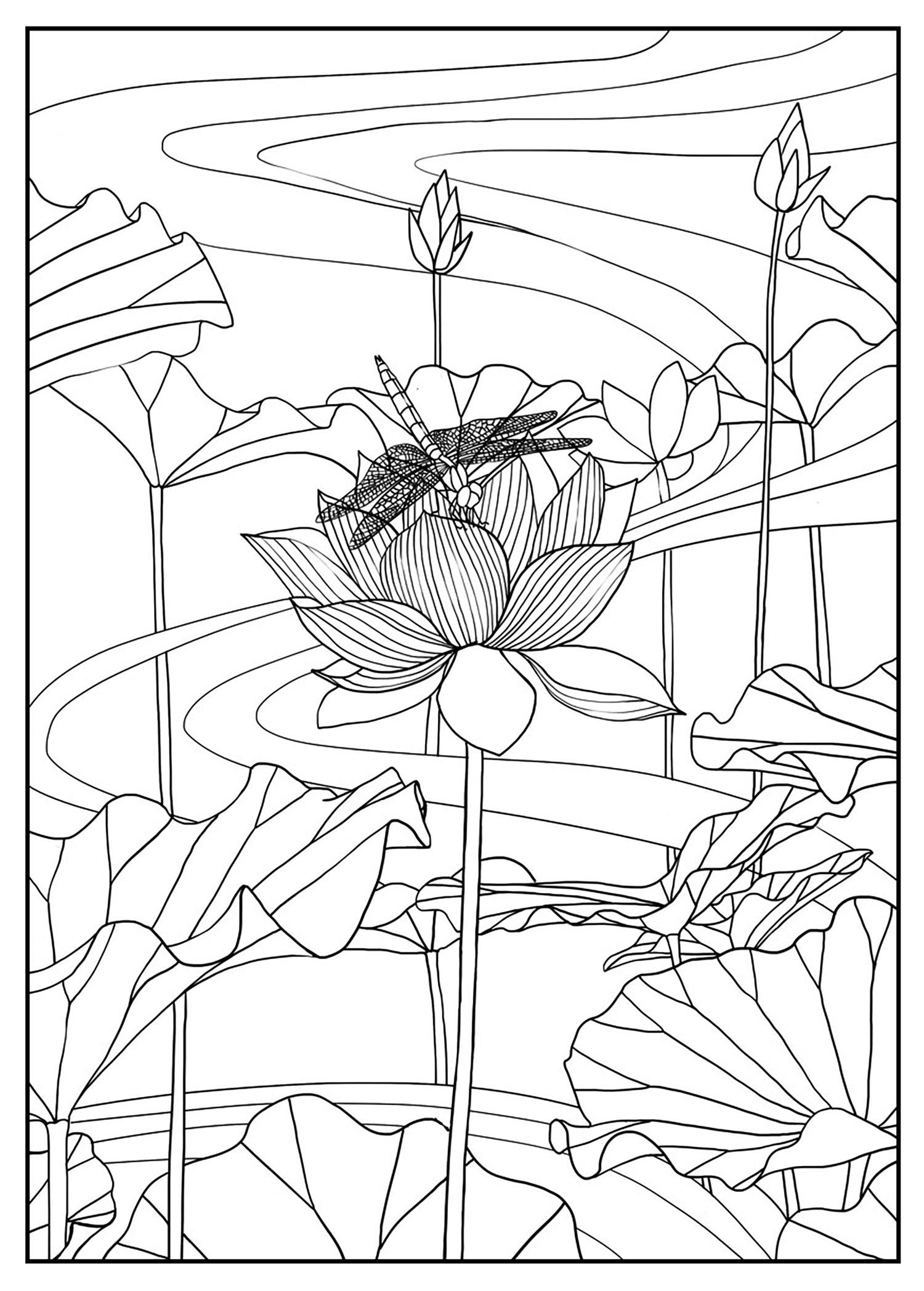 Lotus par mizu - Coloriage de Fleurs - Coloriages pour enfants