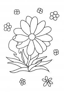 coloriage-fleurs-4 free to print