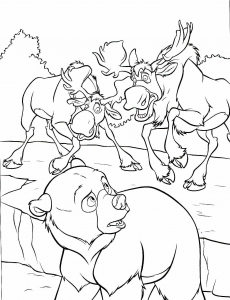 coloriage-frere-des-ours-3 free to print