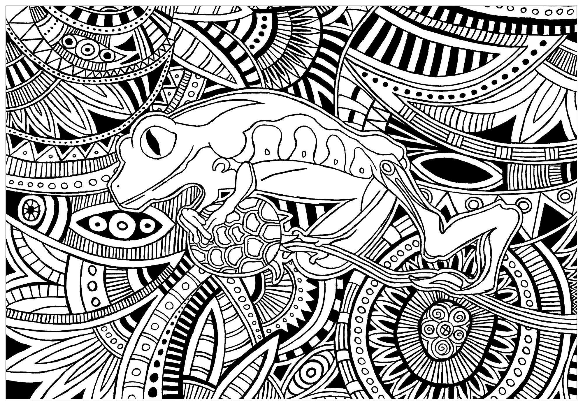 Magnifique grenouille avec fond plein de motifs complexes