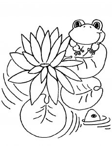 Frog on lily pad coloring page Lovely Lily Pad Coloring Page New Conventional Lily Pad Coloring Page