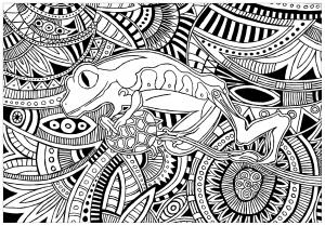 Coloriage grenouille fond motifs