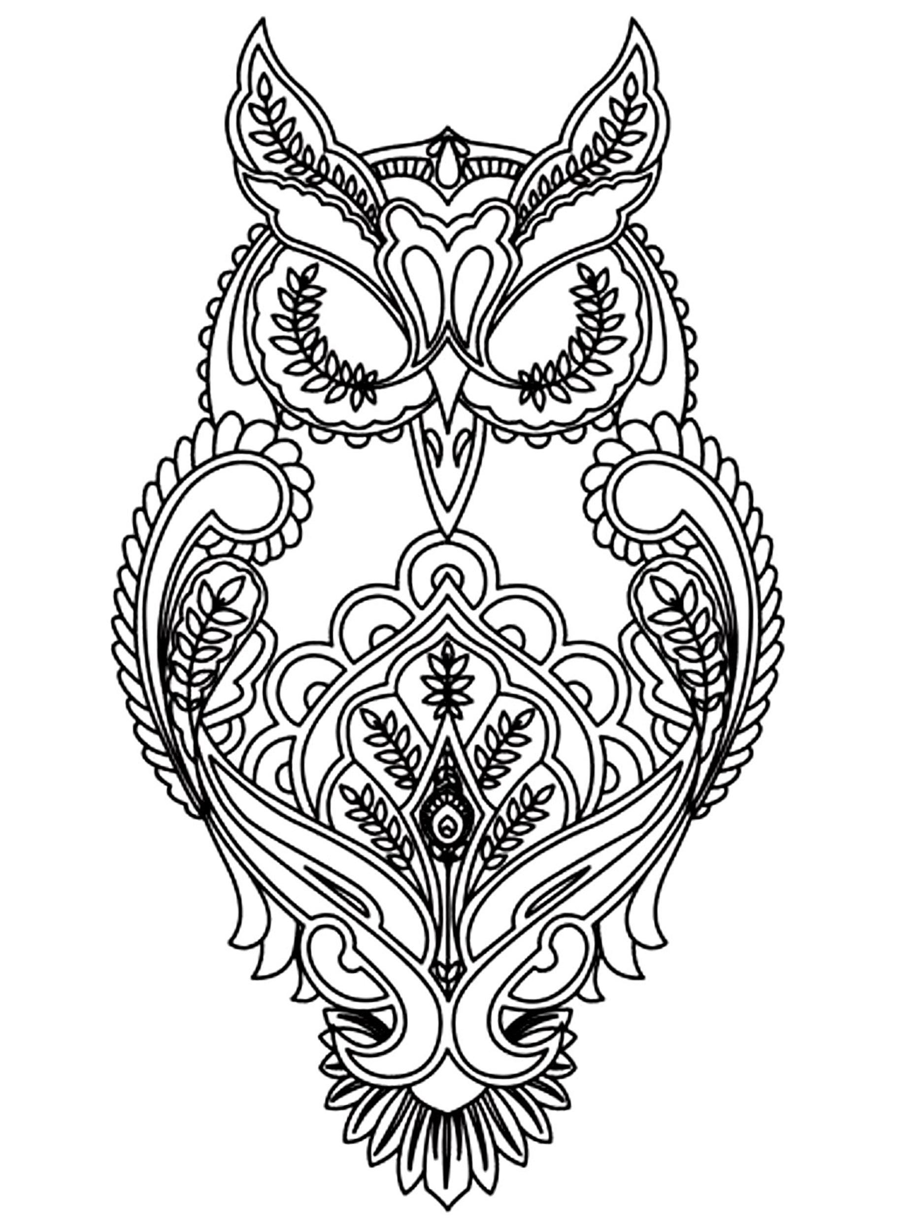 Coloriage de hiboux à imprimer - Coloriage de Hiboux ...
