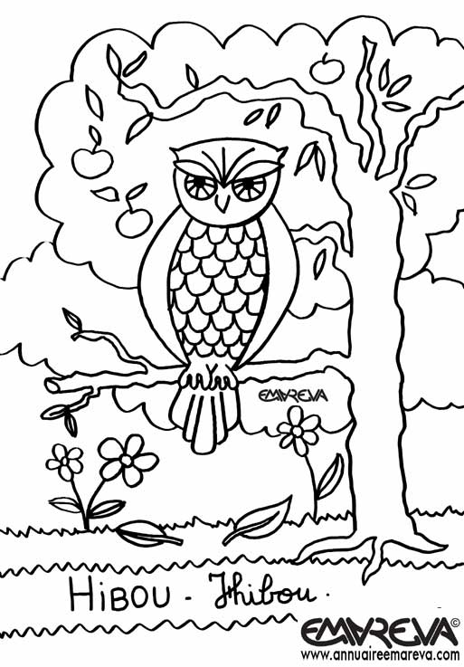 dessin hibou coloriage de hiboux coloriages pour enfants. Black Bedroom Furniture Sets. Home Design Ideas