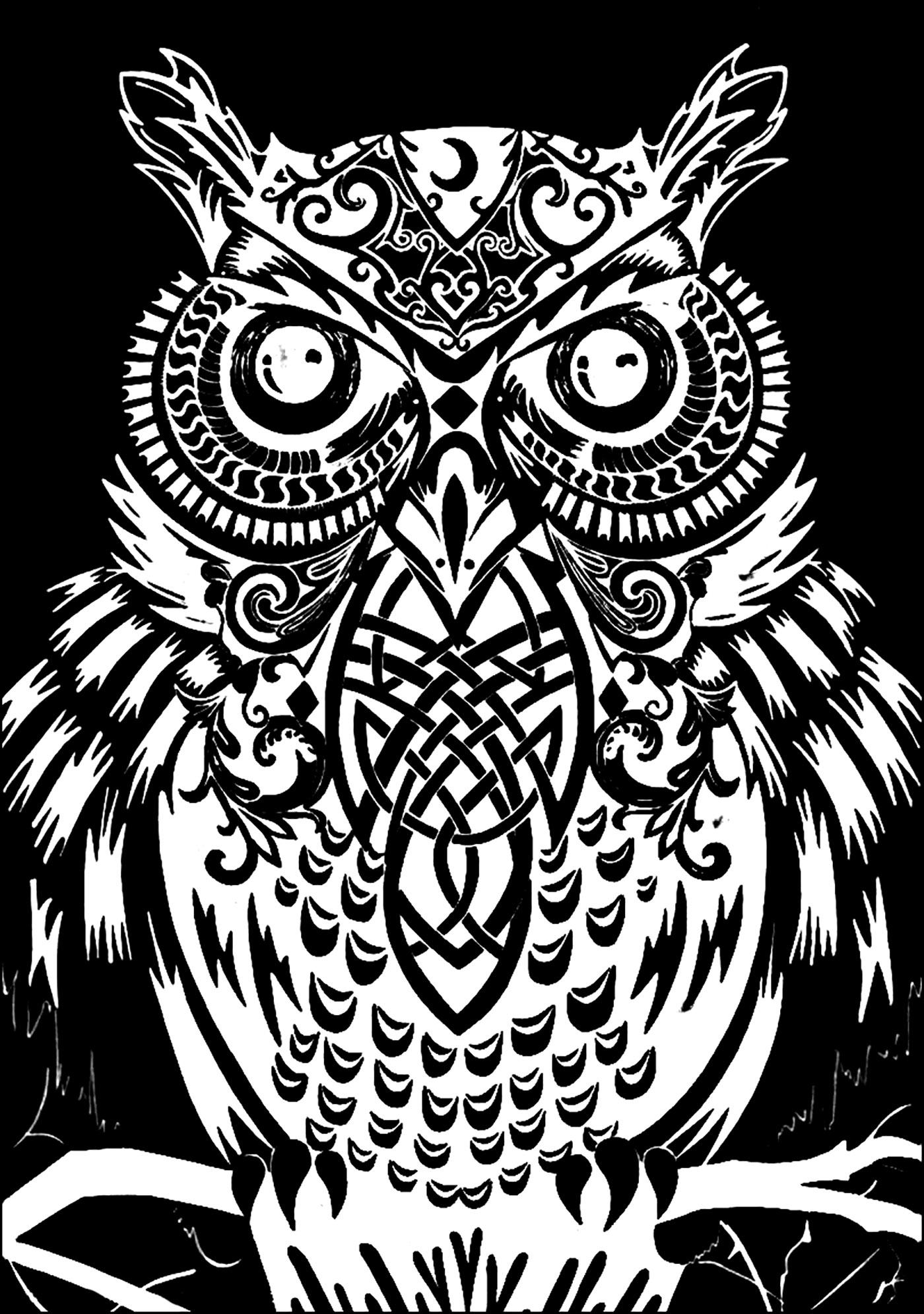 Hibou avec fond noir coloriage de hiboux coloriages - Dessin fond noir ...