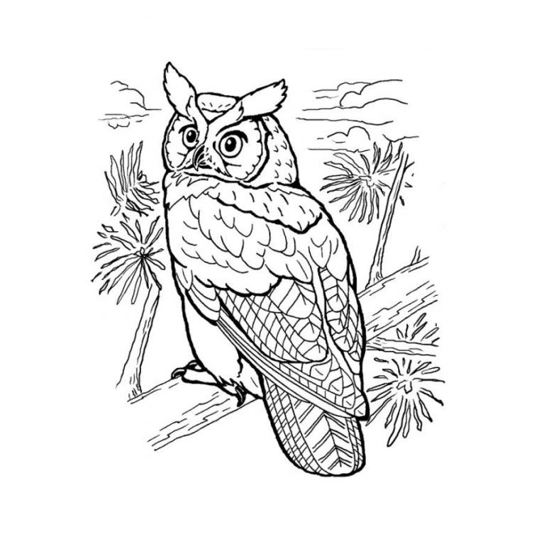 coloriage hibou grand duc free to print