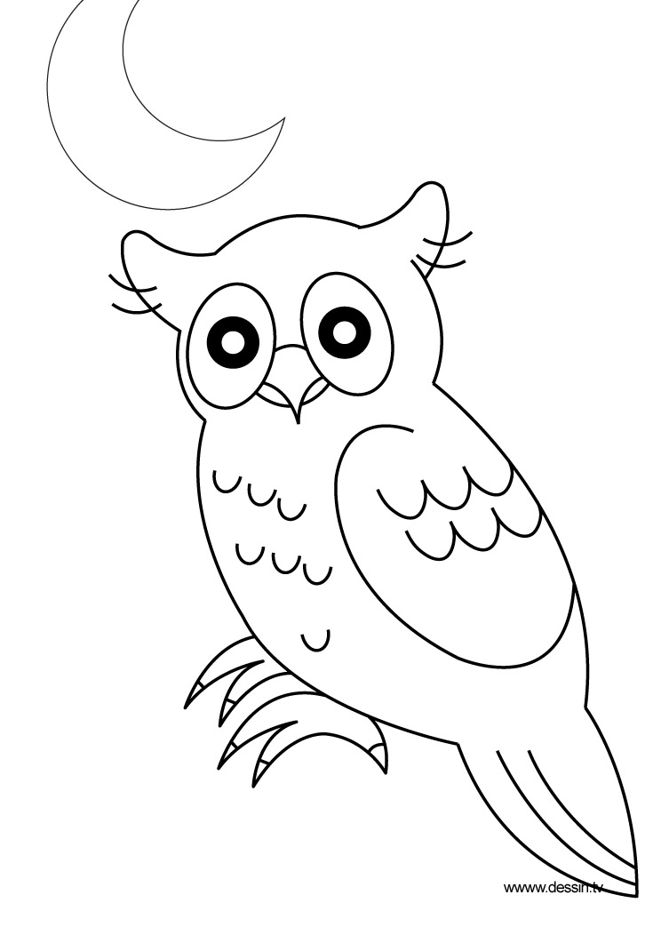 Hibou coloriage de hiboux coloriages pour enfants - Hibou a colorier ...