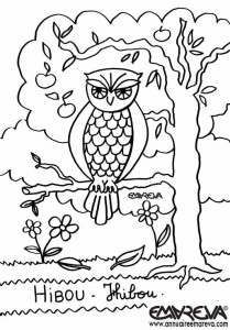 coloriage-dessin-hibou free to print