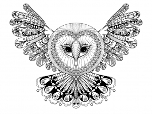 coloriage-hibou-ailes-deployees-grande-tete free to print