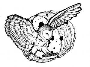 Coloriage hibou ailes deployees