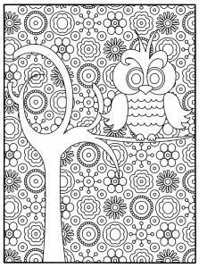 Coloriage hibou arbre fond motifs