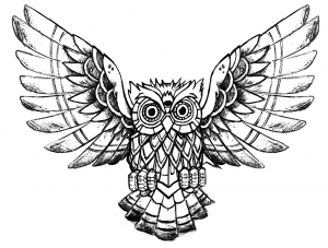 Coloriage hibou difficile